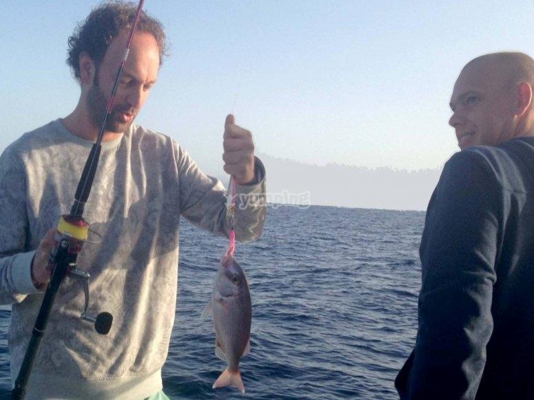 Tutti i tipi di pesce