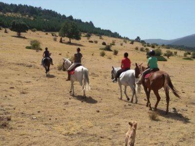 Montar a caballo en Corvera con almuerzo 2 horas