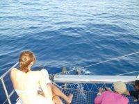 Sentada junto a los delfines