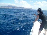 Tomando fotos de los cetaceos