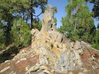 Visita guiada Parque Natural La Corona Forestal