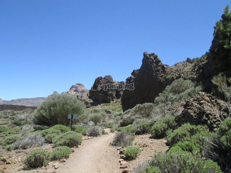 Camino de Tenerife