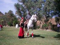espectaculos a caballo