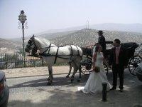 coche de caballos para su boda