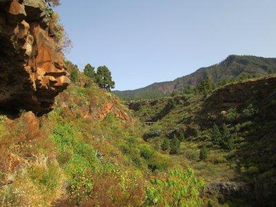 Ruta guiada al Barranco La Gotera