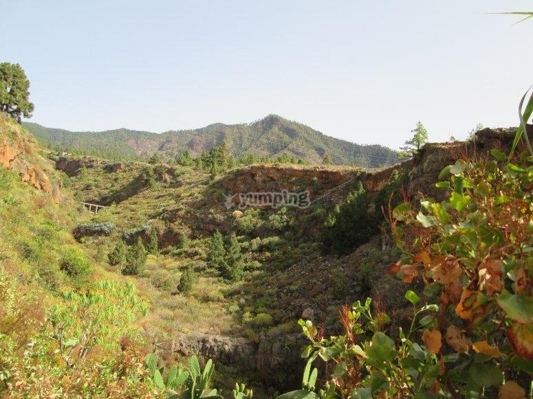 Ruta por el barranco El Rincón