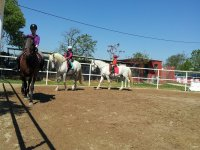 girando en la pista de equitacion