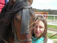 mimando al caballo