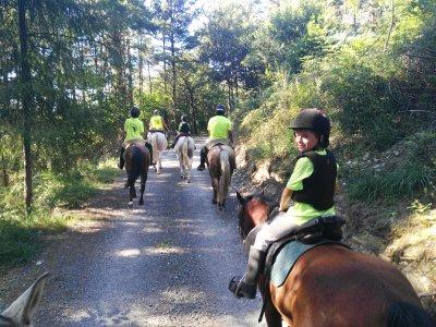 Paseo a caballo en Ezkio-Itsaso 2 horas