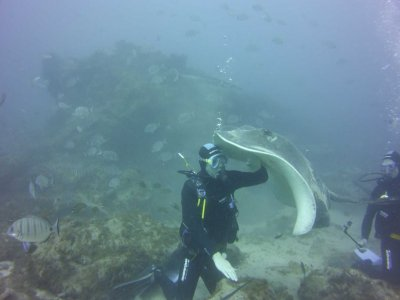 Ocean Trek