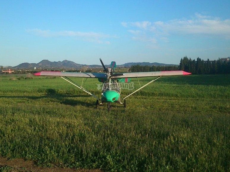weedhopper nel campo di volo