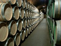 Wine tourism in the Requena valley