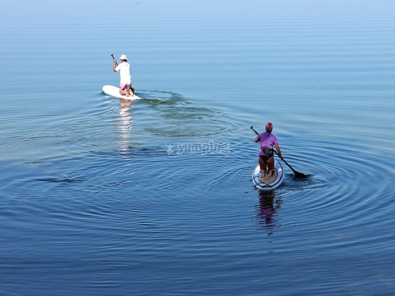Paddle surfing with your couple