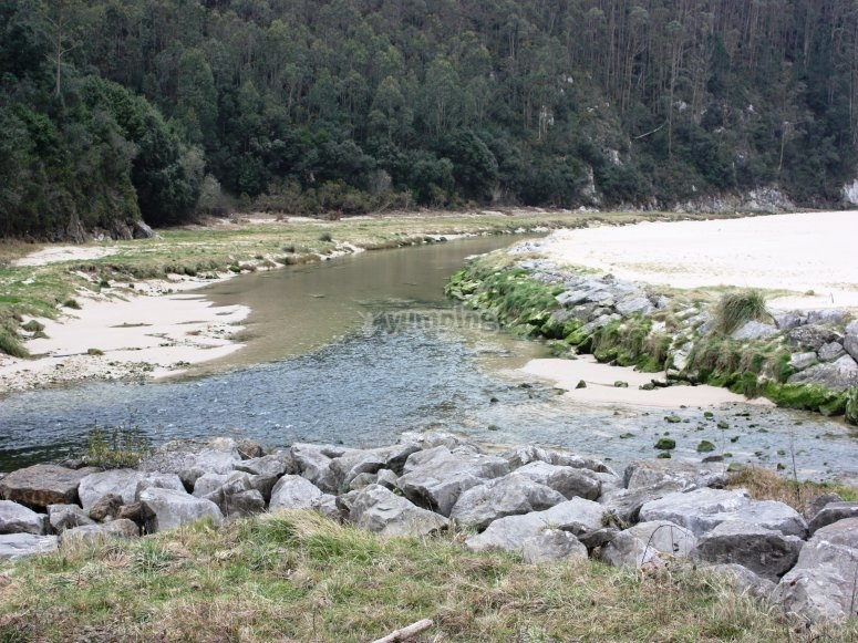 The Purón river