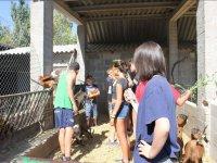 Les Garrigues儿童动物园入口