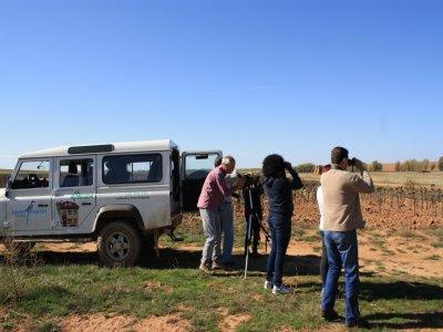 Observación de aves y naturaleza en Land Rover