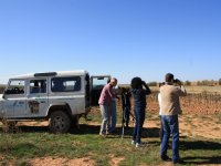 Bird watching and nature observation, Land Rovers