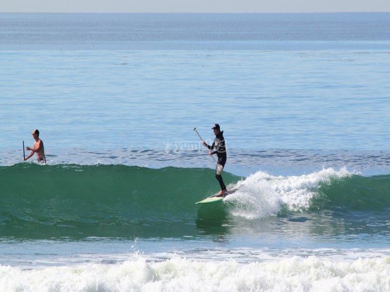 Paddle surf en las olas