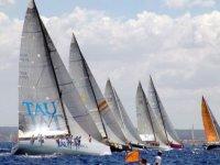 veleros grises en el mar compitiendo en una regata