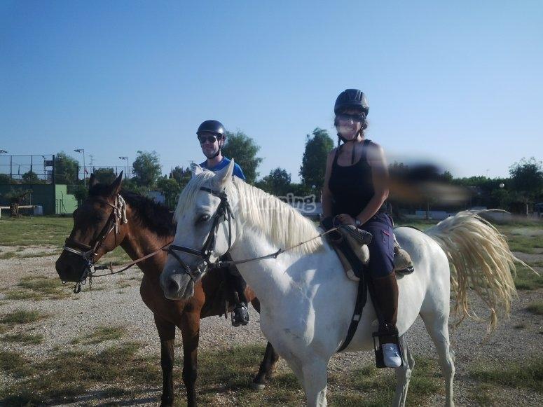 Montando nuestros dociles caballos