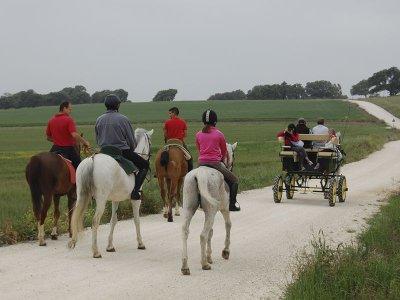 1h 30 min horseback route