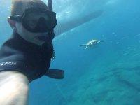 Foto con tortuga marina mientras practicas snorkel