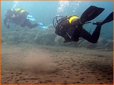 Solo Buceo Tenerife