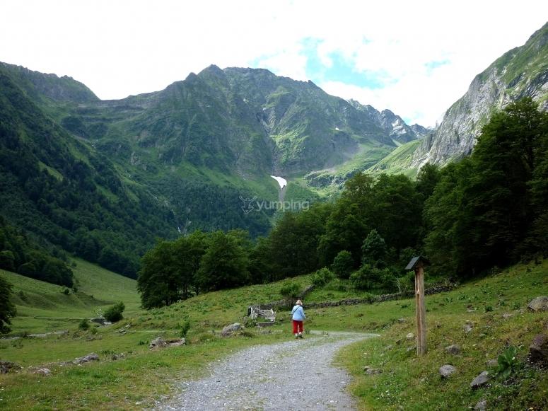 Paseando en el valle