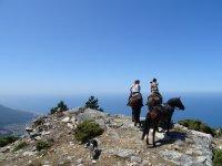 Ascendiendo la ladera con los caballos