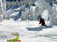 雪中的运动员