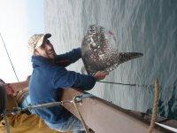 gran pesca