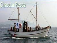 Pesca Deportiva en el Barco Chasula Paseos en Barco