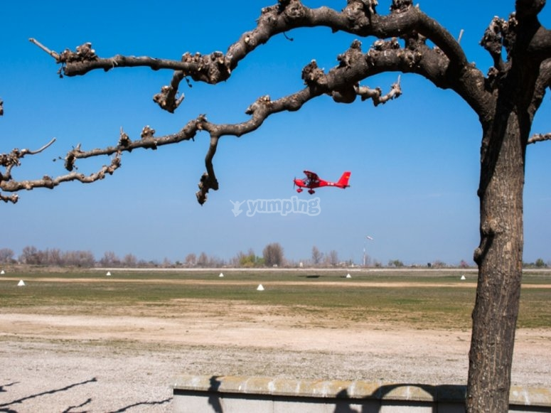 Avioneta roja