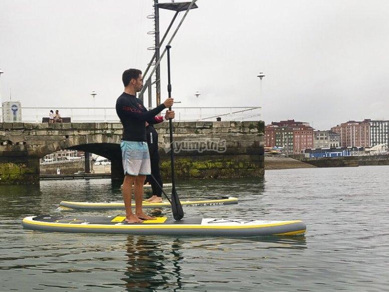 paddle surf monitor