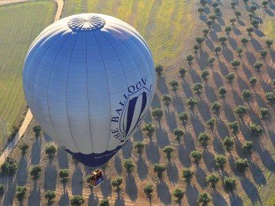 Volo in mongolfiera a Cordova con pranzo e foto