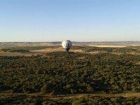 Stag/Hen with hot-air ballon in córdoba