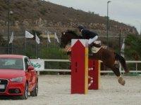 Equitación en Gran Canaria