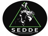 Sedde Clases de Equitación