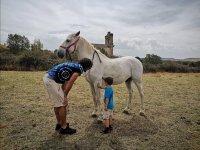 Monitor y alumno mimando al caballo