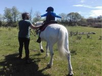儿童骑马课