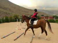 Pasando obstáculos sobre el caballo
