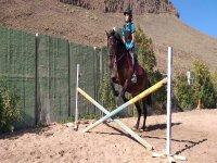 Saltando la vaya con el caballo