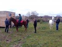 以道德的方式在中心骑乘马匹