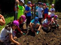 Realizando trabajos en el huerto