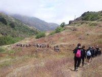 Avanzando hacia el monte
