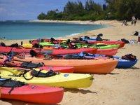 Kayaks on the beach shore