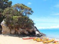 Los kayaks en la orilla