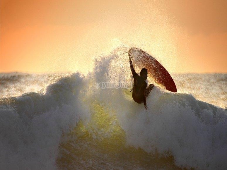 Surfea como siempre has deseado