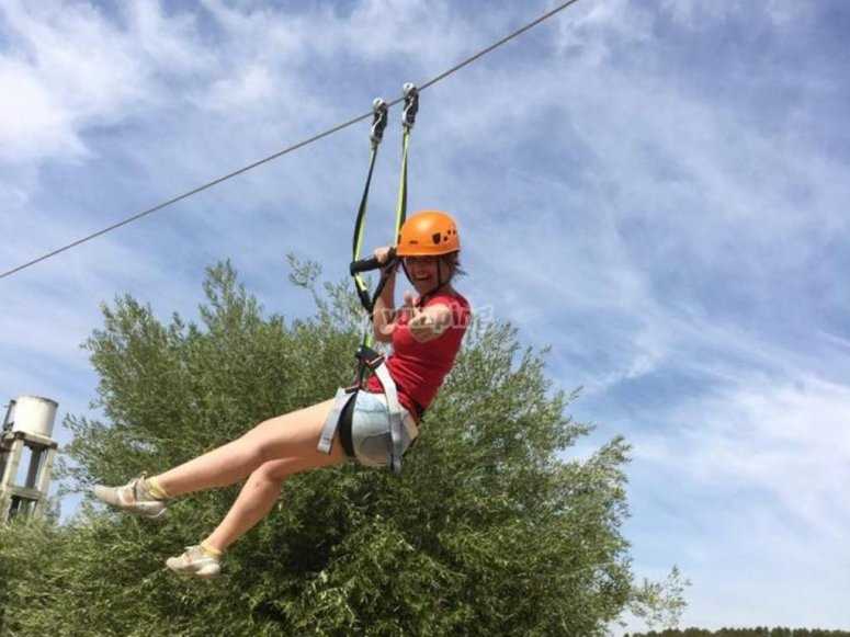 Zip line and olive oil trees