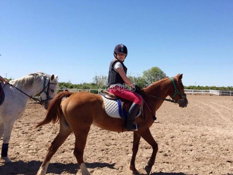 Encontraras el caballo perfecto
